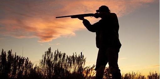 manejo de escopeta_